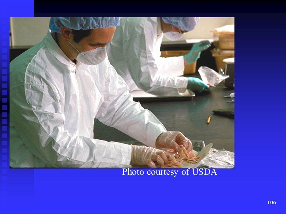 Say nothing Photo courtesy of USDA