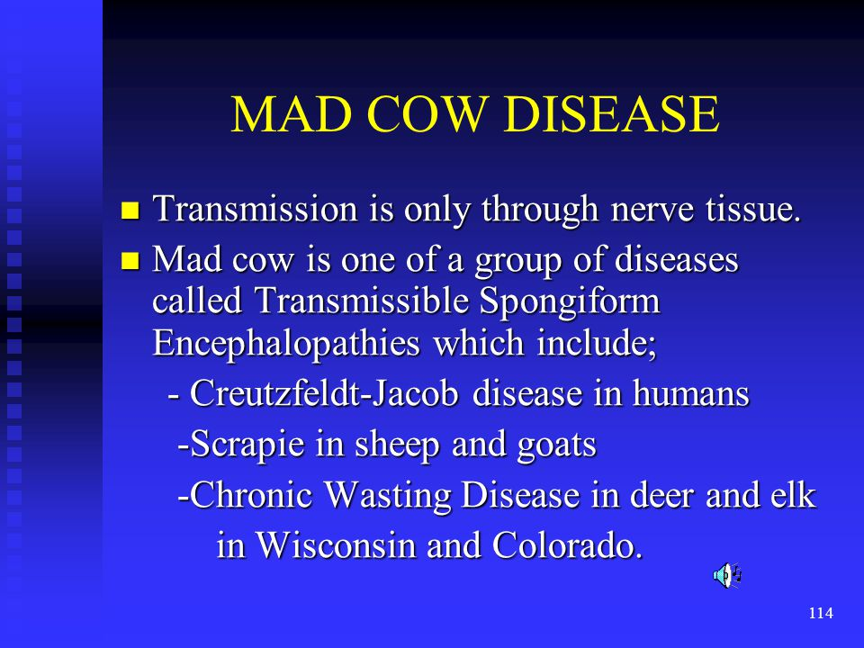 MAD COW DISEASE Transmission is only through nerve tissue.