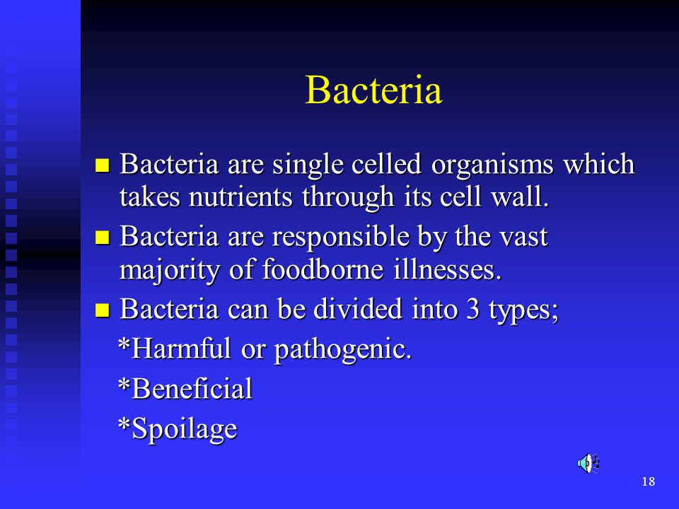 Bacteria Bacteria are single celled organisms which takes nutrients through its cell wall.