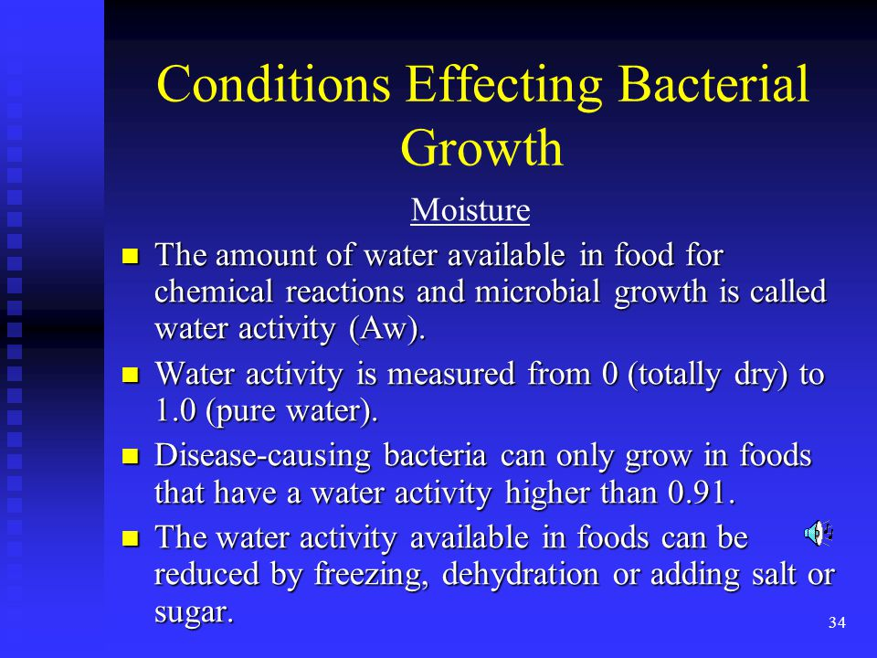 Conditions Effecting Bacterial Growth