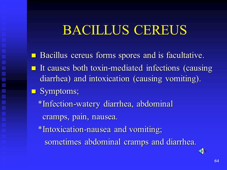 BACILLUS CEREUS Bacillus cereus forms spores and is facultative.