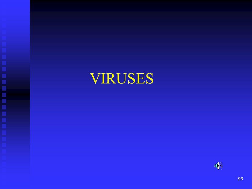 VIRUSES Read the slide