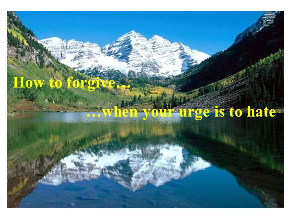 How to forgive… …when your urge is to hate