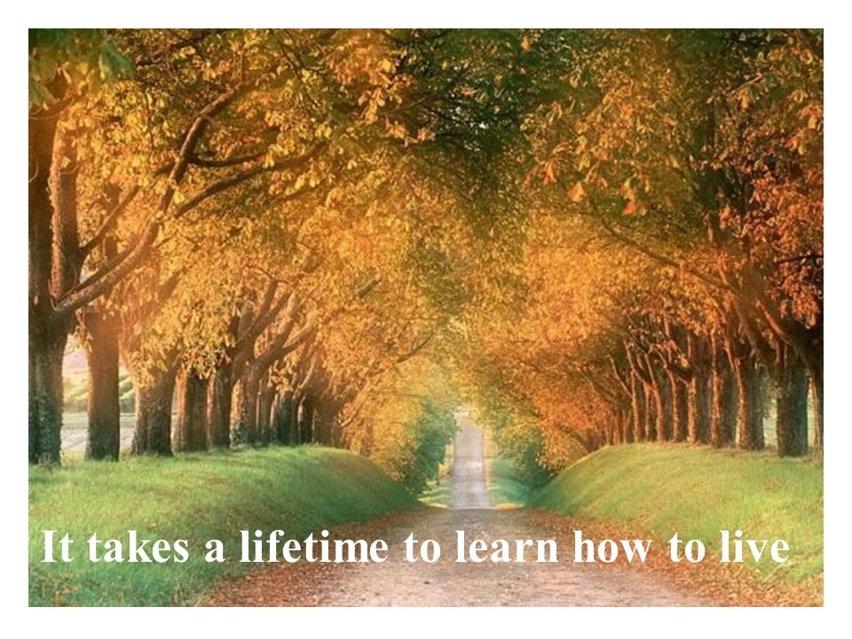 It takes a lifetime to learn how to live