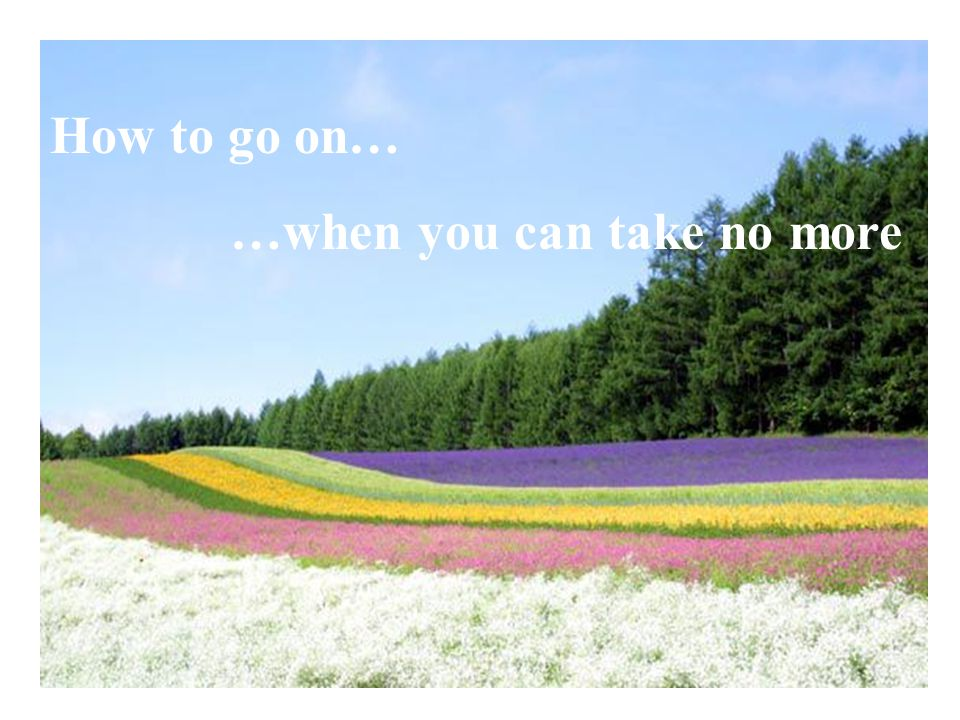 How to go on… …when you can take no more