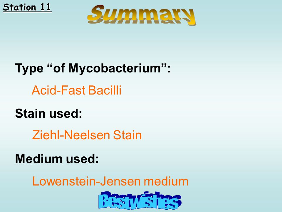 Summary Best wishes Type of Mycobacterium : Stain used: