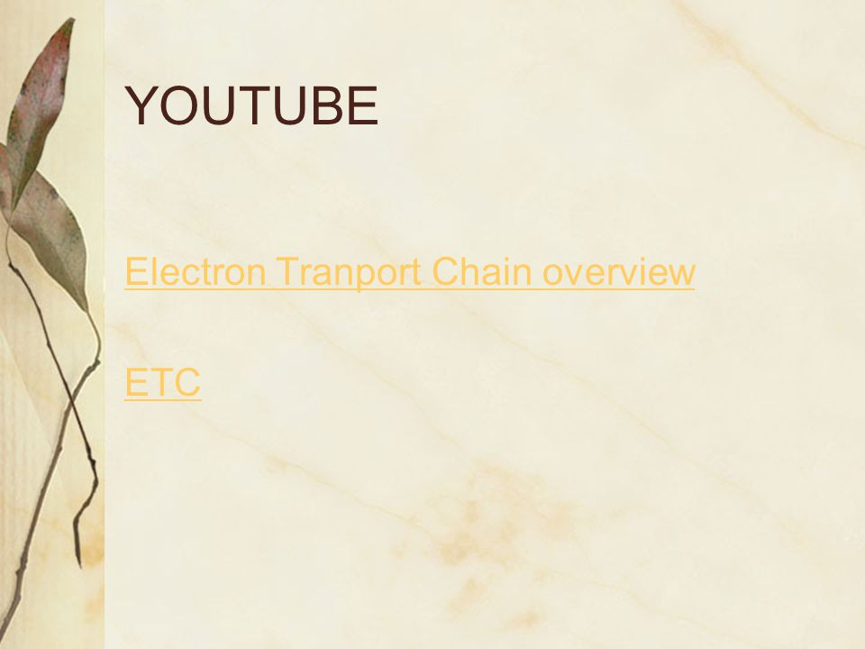 YOUTUBE Electron Tranport Chain overview ETC