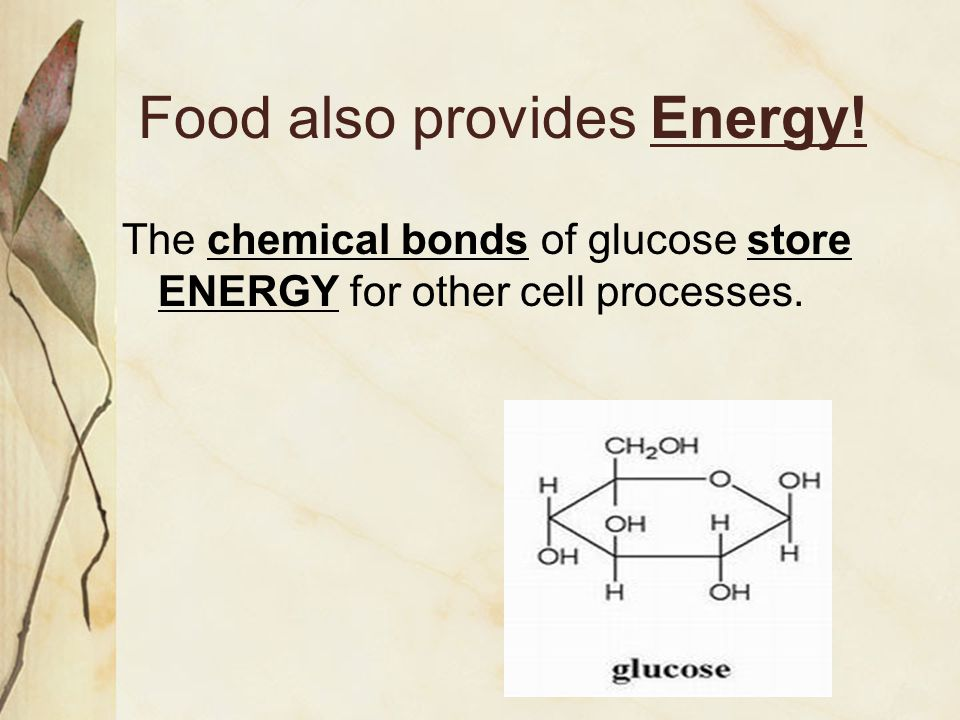 Food also provides Energy!