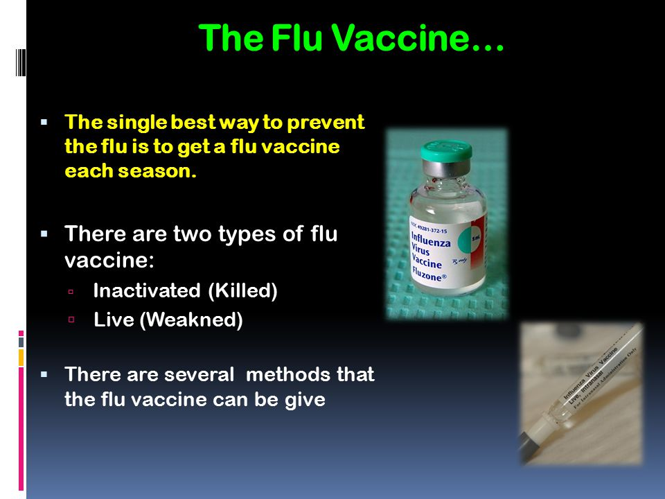 The Flu Vaccine… There are two types of flu vaccine: