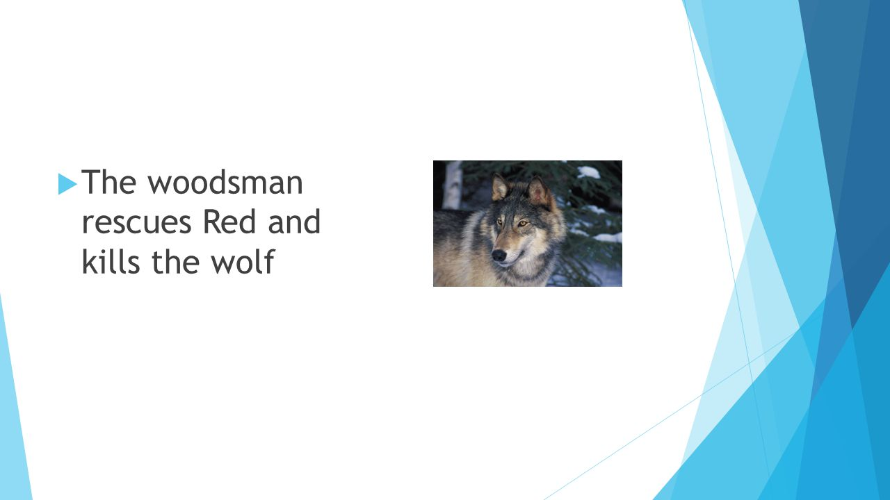 The woodsman rescues Red and kills the wolf