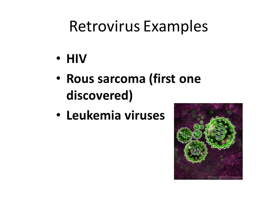 Retrovirus Examples HIV Rous sarcoma (first one discovered)