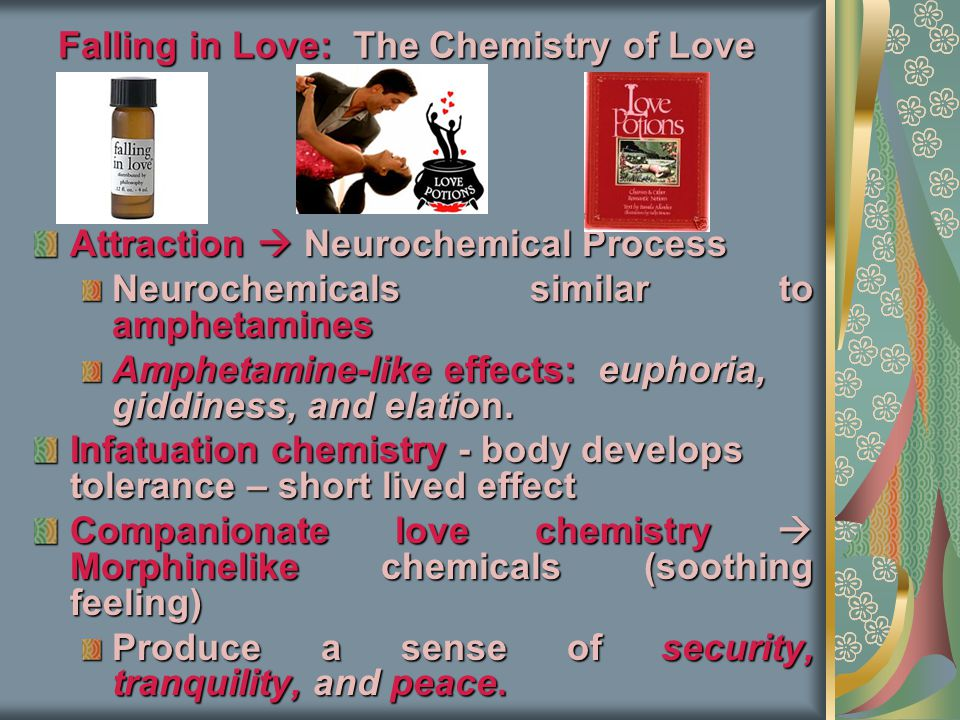 Falling in Love: The Chemistry of Love