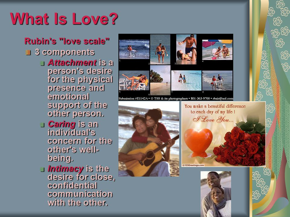 What Is Love Rubin s love scale 3 components