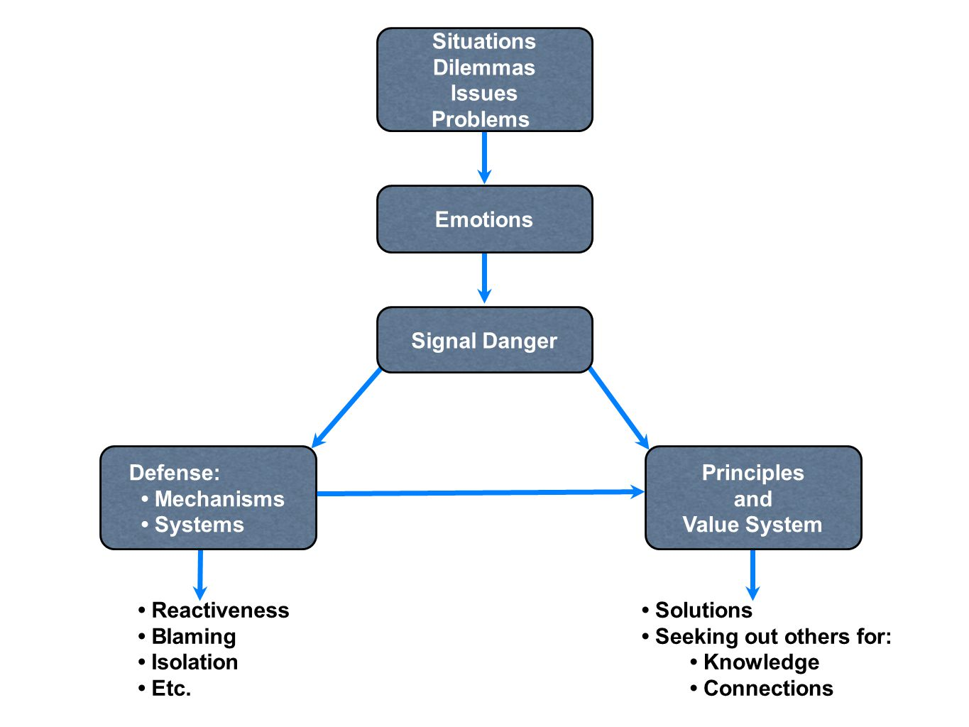 Situations Dilemmas. Issues. Problems. Emotions. Signal Danger. Defense: • Mechanisms. • Systems.