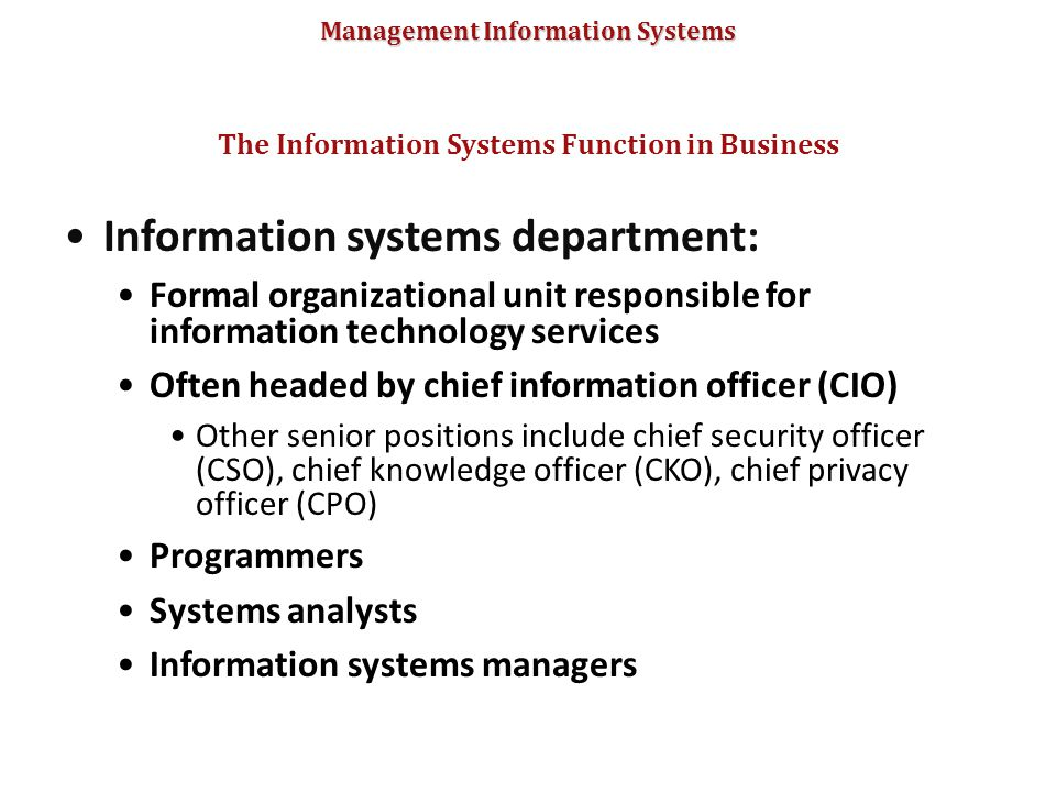 The Information Systems Function in Business