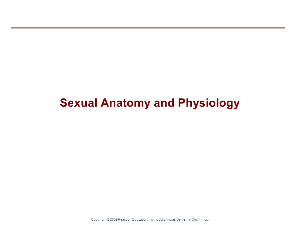 Sexual Anatomy and Physiology
