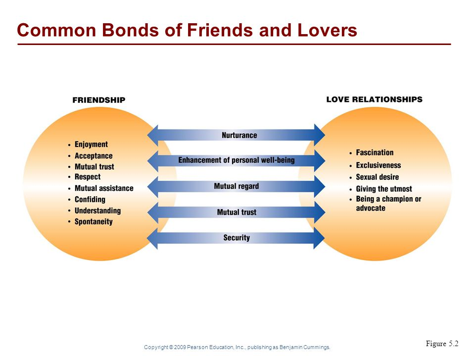 Common Bonds of Friends and Lovers