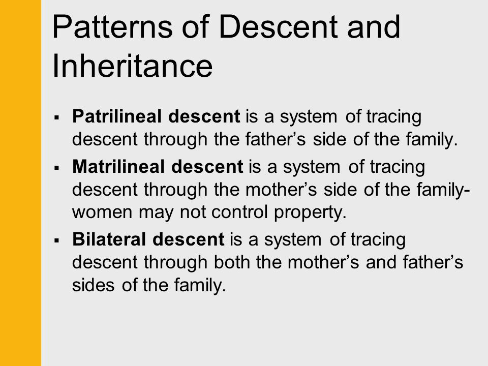 Patterns of Descent and Inheritance