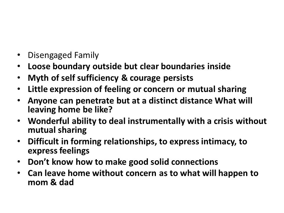 Disengaged Family Loose boundary outside but clear boundaries inside. Myth of self sufficiency & courage persists.