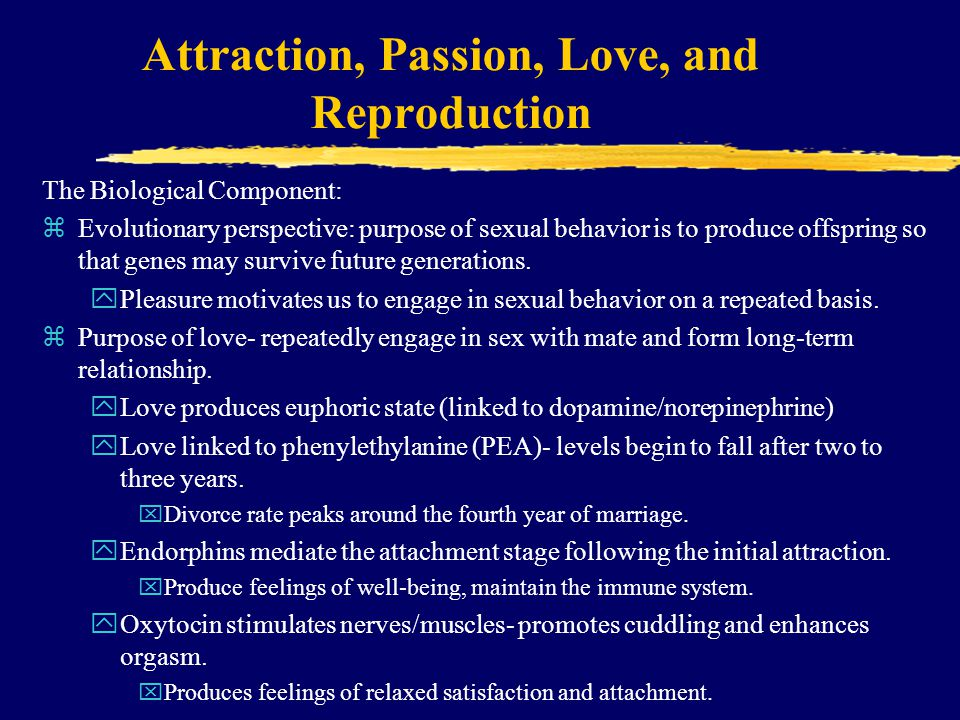 Attraction, Passion, Love, and Reproduction