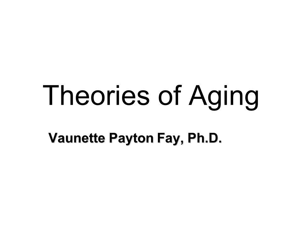 Vaunette Payton Fay, Ph.D.