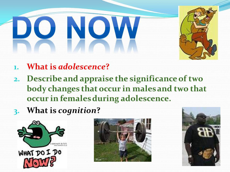 DO NOW What is adolescence