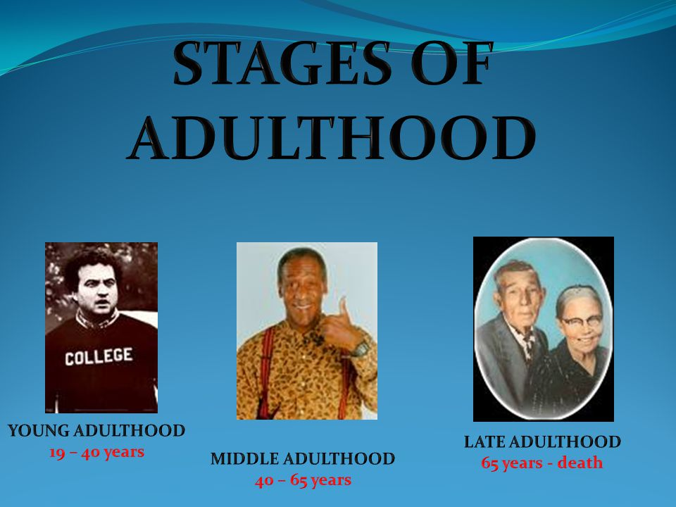 STAGES OF ADULTHOOD YOUNG ADULTHOOD 19 – 40 years LATE ADULTHOOD
