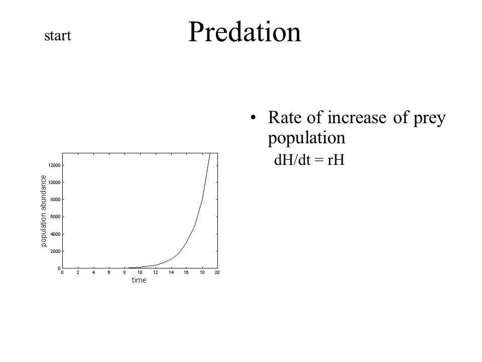 Predation start Rate of increase of prey population dH/dt = rH
