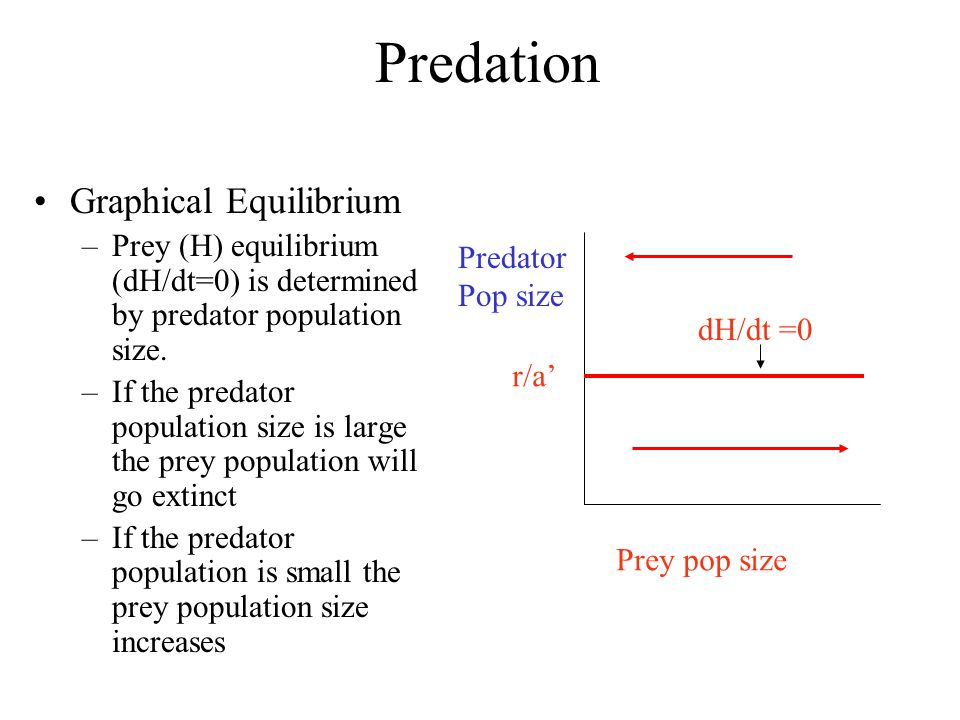 Predation Graphical Equilibrium