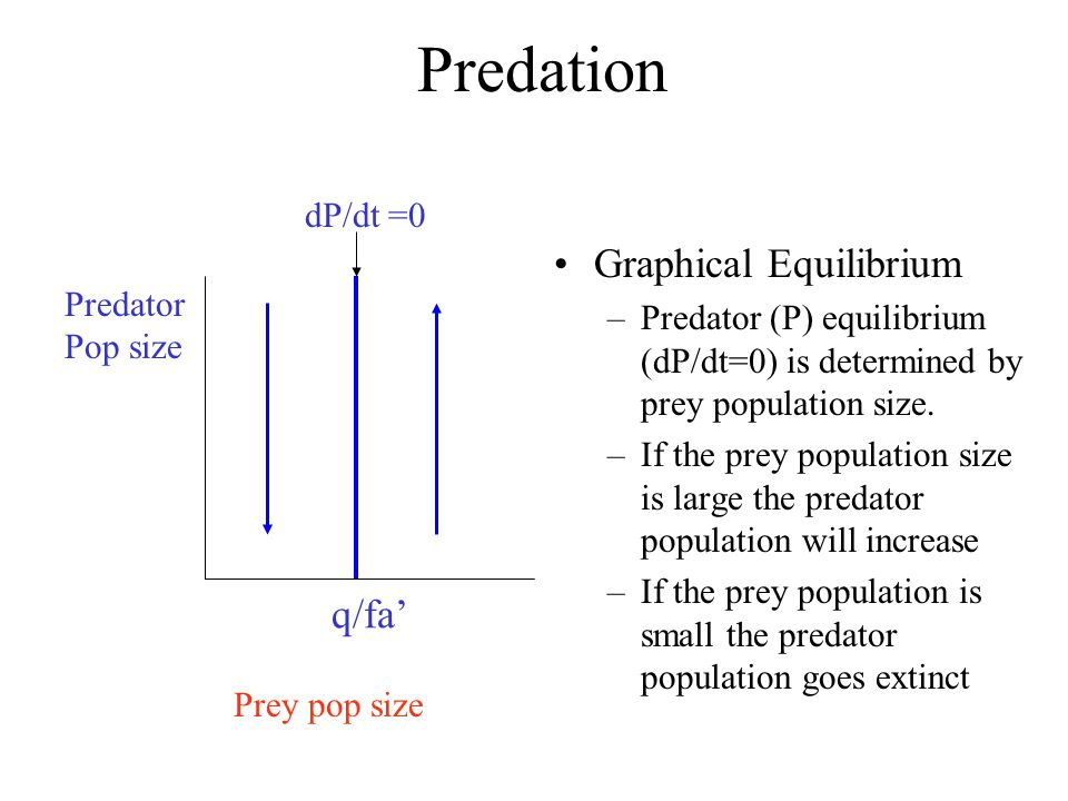 Predation Graphical Equilibrium q/fa' dP/dt =0