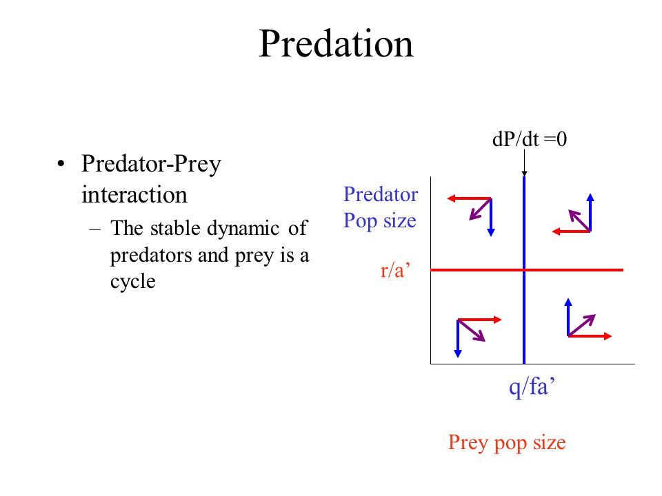 Predation Predator-Prey interaction q/fa' dP/dt =0