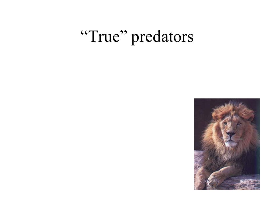 True predators