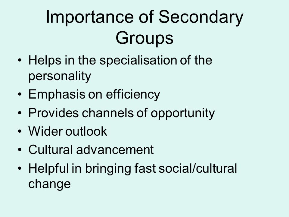 Importance of Secondary Groups