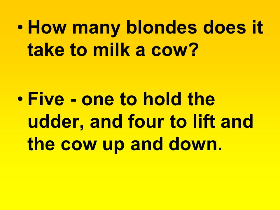 How many blondes does it take to milk a cow