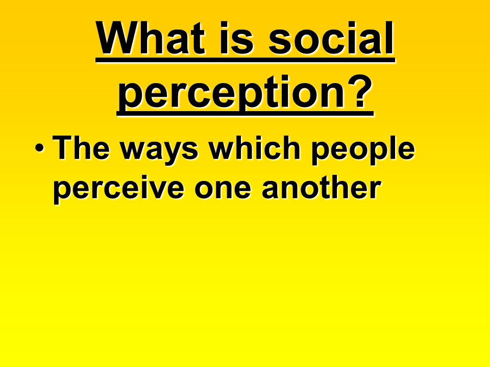 What is social perception