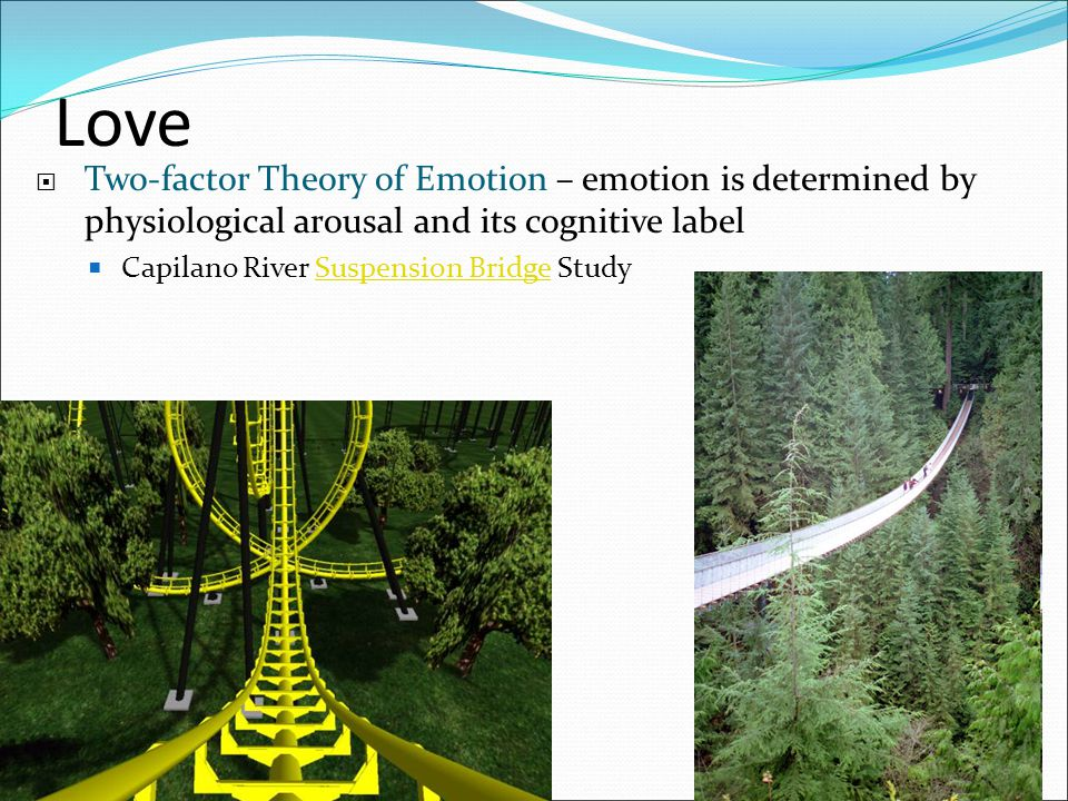 Love Two-factor Theory of Emotion – emotion is determined by physiological arousal and its cognitive label.