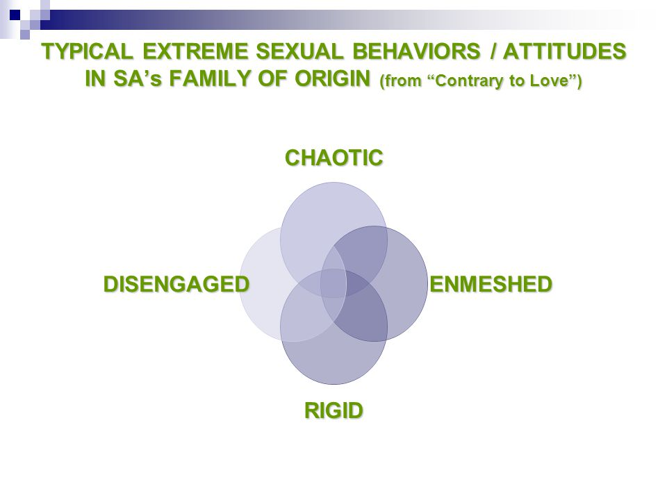 TYPICAL EXTREME SEXUAL BEHAVIORS / ATTITUDES IN SA's FAMILY OF ORIGIN (from Contrary to Love )