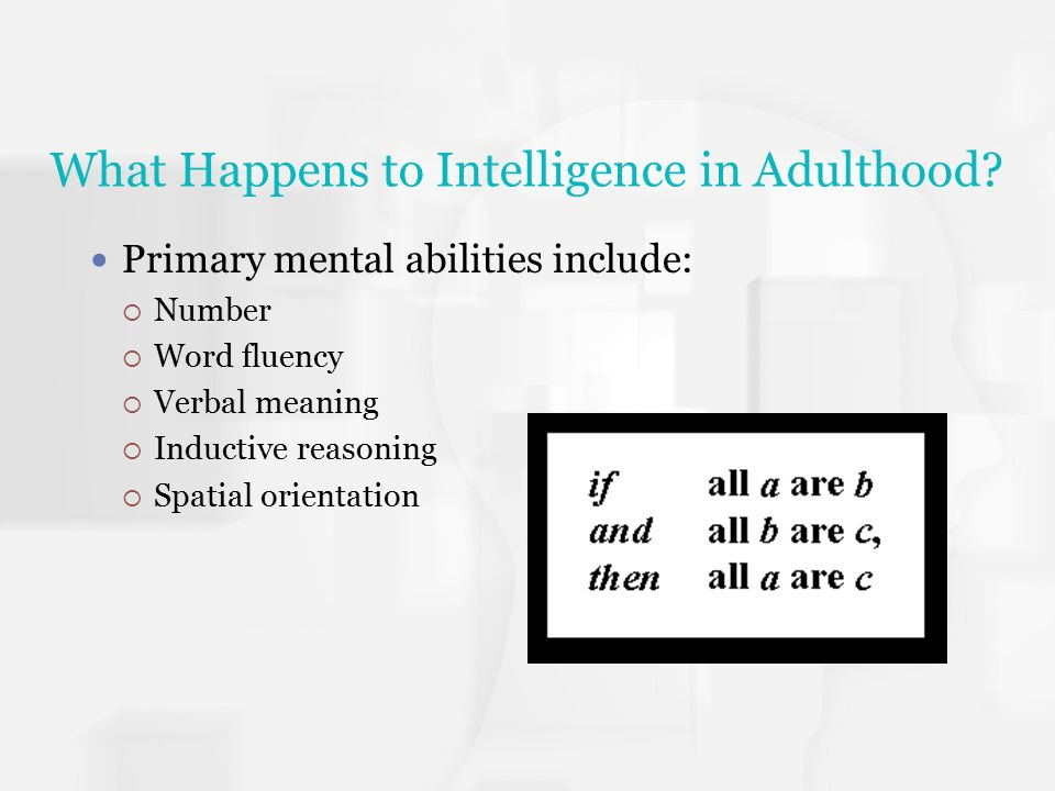What Happens to Intelligence in Adulthood