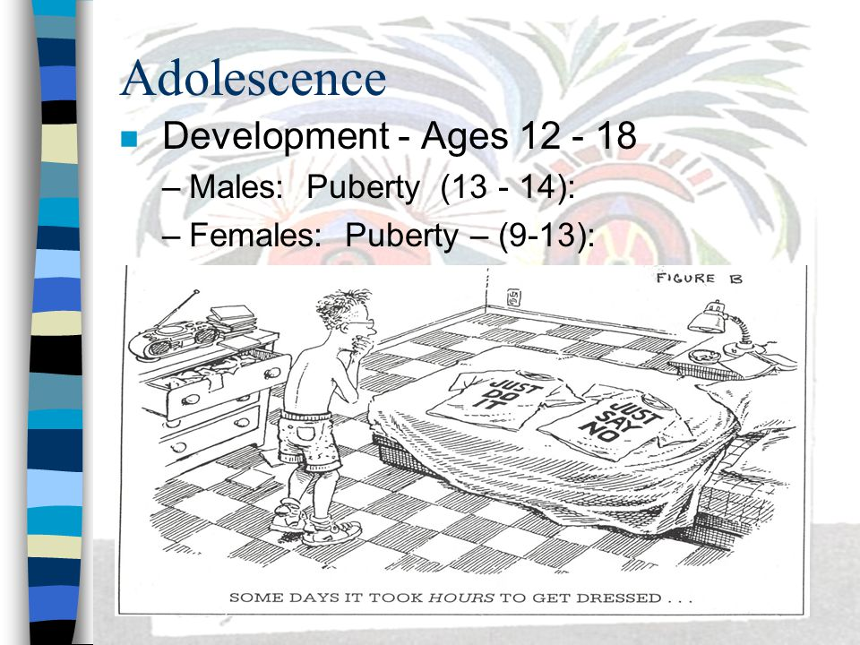 Adolescence Development - Ages 12 - 18 Males: Puberty (13 - 14):