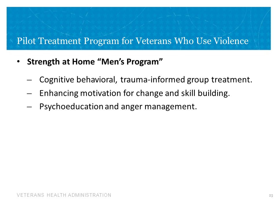 Pilot Treatment Program for Veterans Who Use Violence