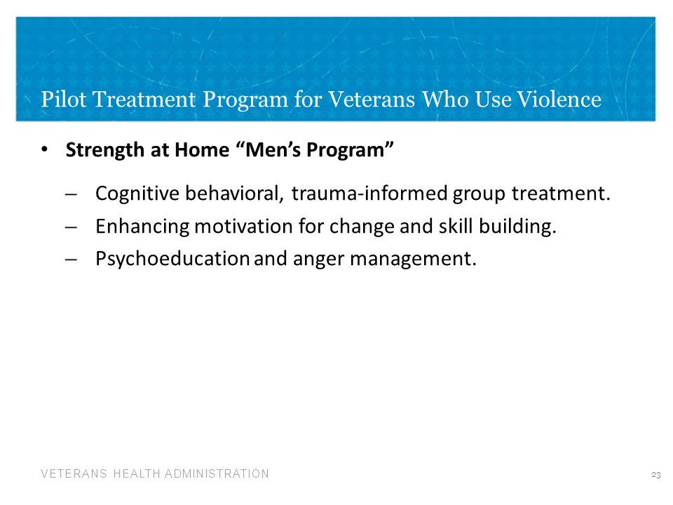 Pilot Treatment Program for Veterans Who Use Violence