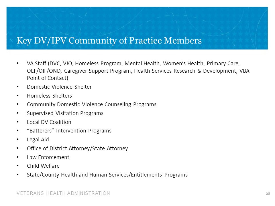 Key DV/IPV Community of Practice Members