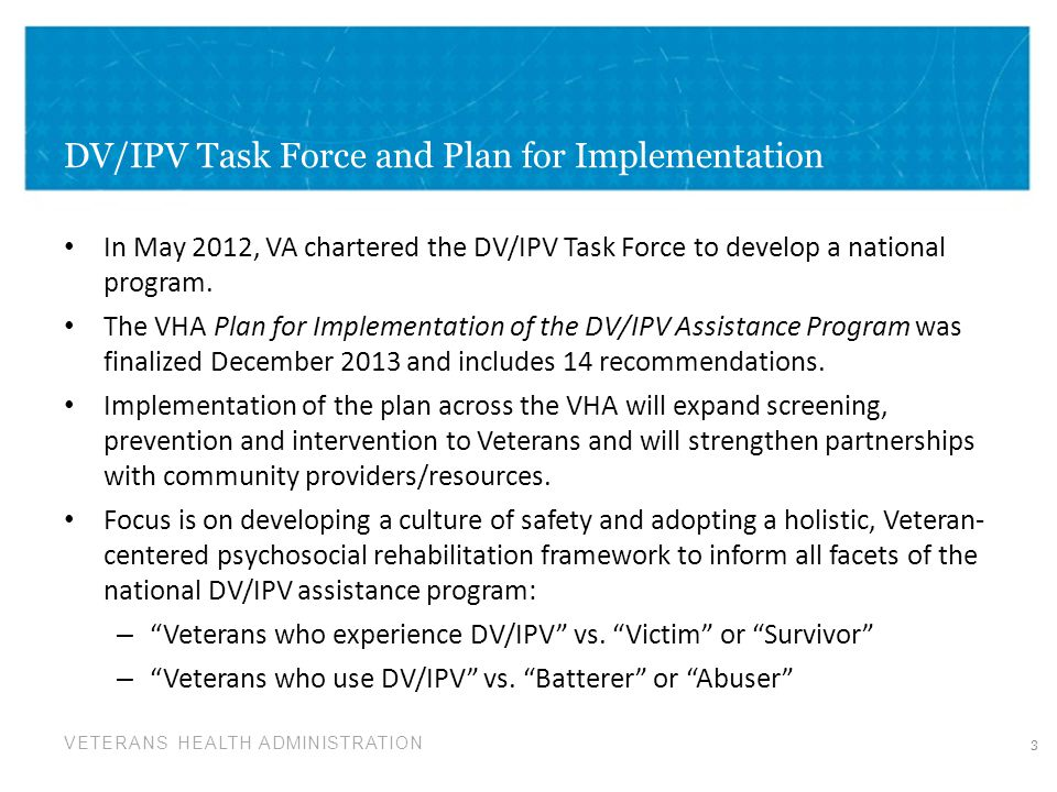 DV/IPV Task Force and Plan for Implementation