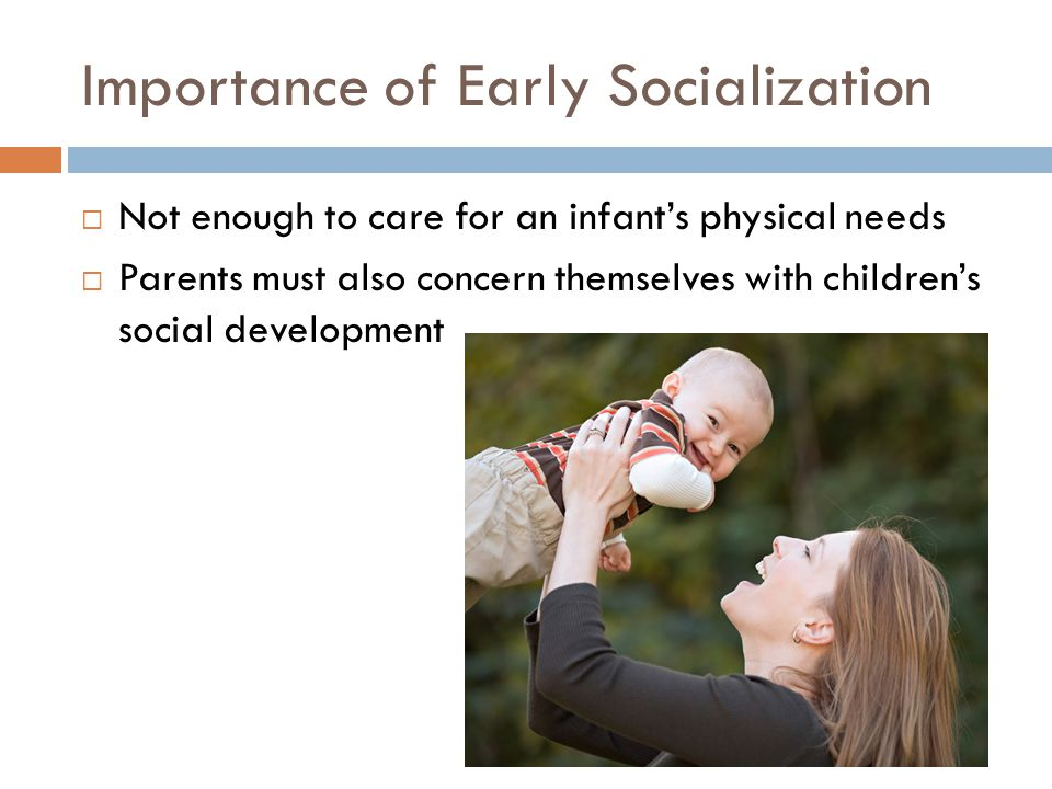 Importance of Early Socialization