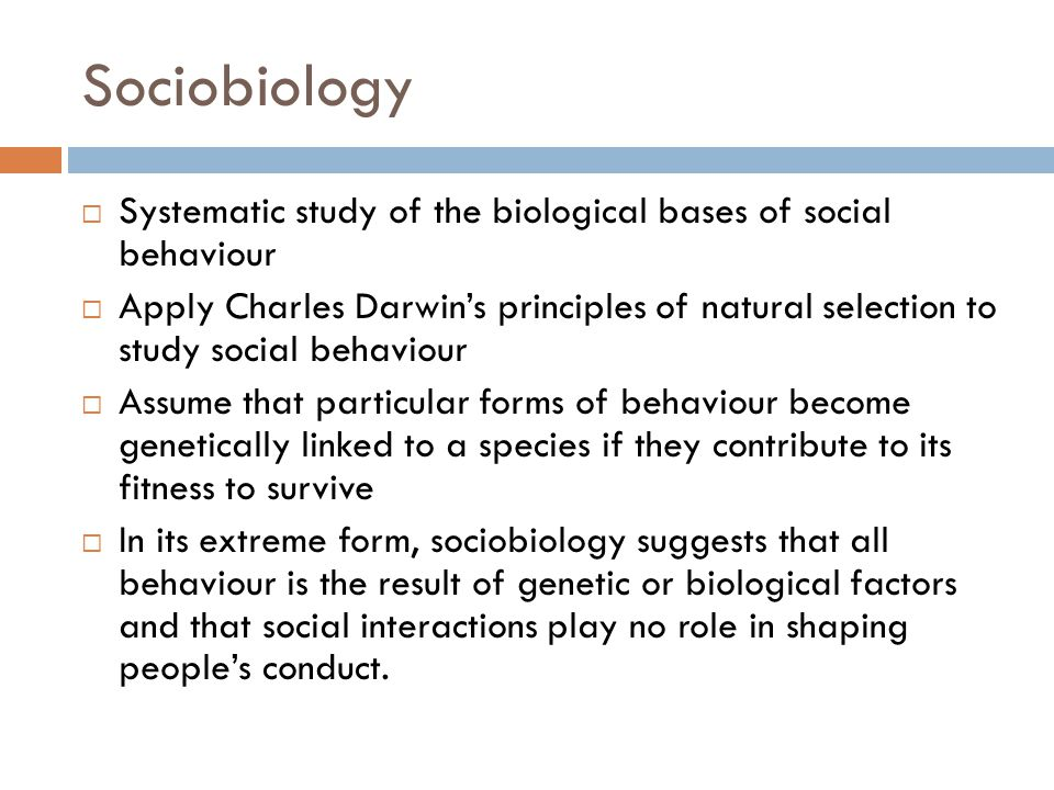 Sociobiology Systematic study of the biological bases of social behaviour.