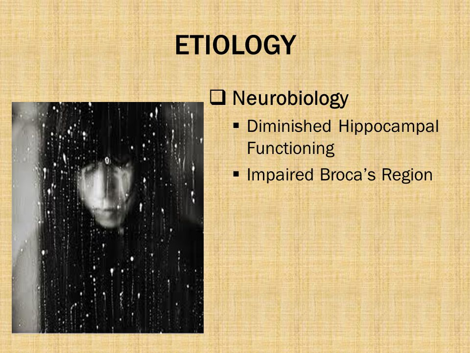 ETIOLOGY Neurobiology Diminished Hippocampal Functioning