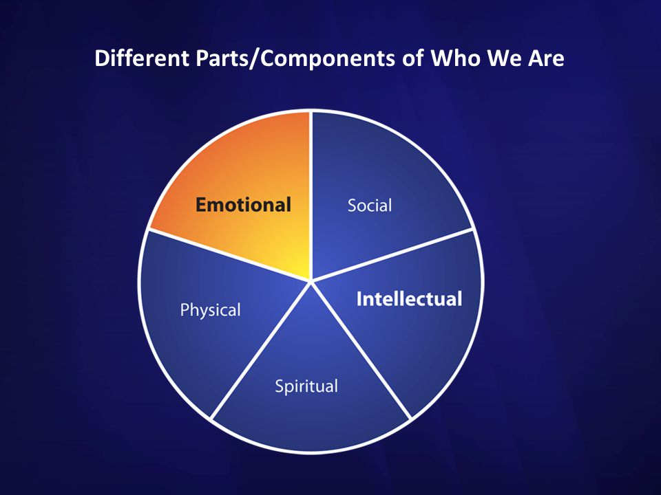Different Parts/Components of Who We Are