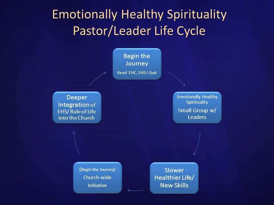 Emotionally Healthy Spirituality Pastor/Leader Life Cycle
