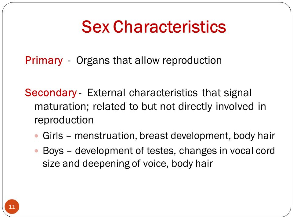 Sex Characteristics Primary - Organs that allow reproduction