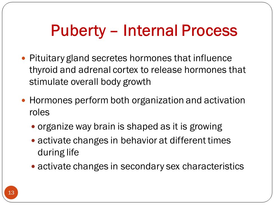 Puberty – Internal Process